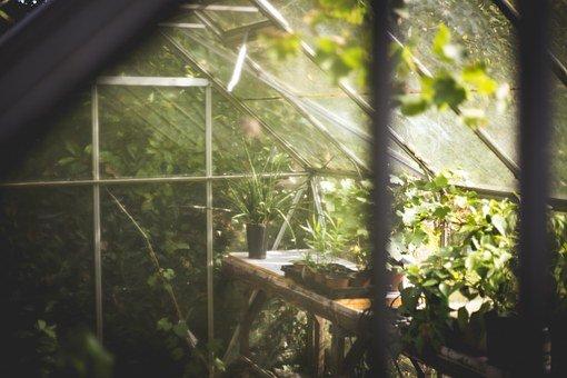 greenhouse-691704__340